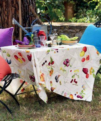 tavola-herbario_grande