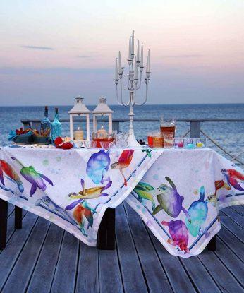 tavola-galapagos